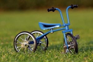 tricycle_on_the_grass_2